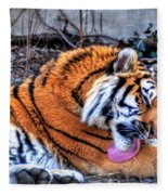 0014 Siberian Tiger Fleece Blanket