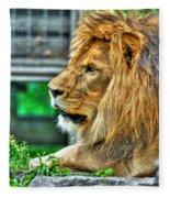 002 Lazy Boy At The Buffalo Zoo Fleece Blanket