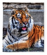 003 Siberian Tiger Fleece Blanket