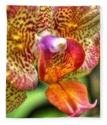 004 Orchid Summer Show Buffalo Botanical Gardens Series Fleece Blanket