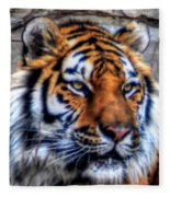 004 Siberian Tiger Fleece Blanket
