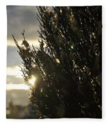 005 Peaking Winter Sunrise Fleece Blanket