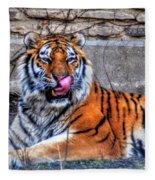 006 Siberian Tiger Fleece Blanket