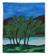 008 Landscape Fleece Blanket