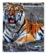 008 Siberian Tiger Fleece Blanket