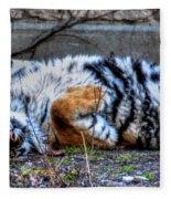009 Siberian Tiger Wubb Me Bellwee Poweesh Fleece Blanket