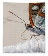 01 Southern White Admiral Butterfly Close Up Fleece Blanket