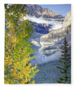 0141 Fall Colors On Icefield Parkway Fleece Blanket