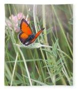02 Balkan Copper Butterfly Fleece Blanket