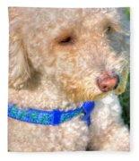 02 Portriat Of Wizard   Pet Series Fleece Blanket