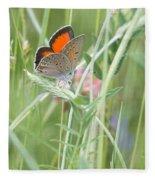 03 Balkan Copper Butterfly Fleece Blanket