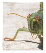 04 Egyptian Locust Grasshopper Fleece Blanket