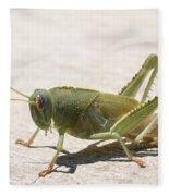 05 Egyptian Locust Grasshopper Fleece Blanket