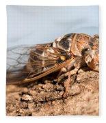 05 New Forest Cicada  Fleece Blanket