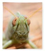 06 Egyptian Locust Grasshopper Fleece Blanket