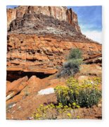 0712 Guardian Of Canyonland Fleece Blanket
