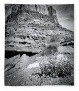 0715 Guardian Of Canyonland Fleece Blanket
