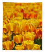 090416p026 Fleece Blanket