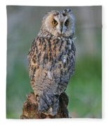 090811p316 Fleece Blanket