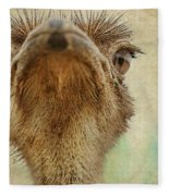 Ostrich Closeup Fleece Blanket