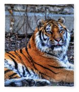 0013 Siberian Tiger Fleece Blanket