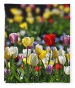 090416p033 Fleece Blanket