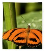 A Banded Orange Heliconian Butterfly Fleece Blanket