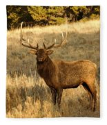 A Bull Elk In Rut Fleece Blanket