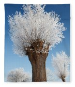 A Frosted Willow On A Very Cold And Bright Winter Day Fleece Blanket
