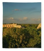 A Panoramic View From Left To Right Fleece Blanket