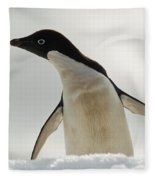 Adelie Penguin Fleece Blanket