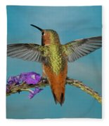 Allens Hummingbird Male Fleece Blanket