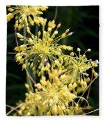Allium Flavum Or Fireworks Allium Fleece Blanket