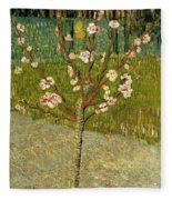 Almond Tree In Blossom Fleece Blanket