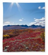 Alpine Landscape In Fall Fleece Blanket