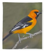 Altamira Oriole Fleece Blanket