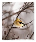 American Goldfinch In Winter Fleece Blanket