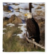 An Eagle Perched   Fleece Blanket