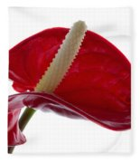 Anthurium Fleece Blanket