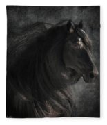Anton 343 Fleece Blanket