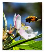 Apple Blossom And Honey Bee Fleece Blanket