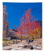 Asheville North Carolina Fleece Blanket