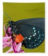 Atala Butterfly Fleece Blanket