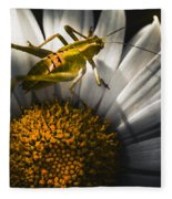 Australian Grasshopper On Flowers. Spring Concept Fleece Blanket