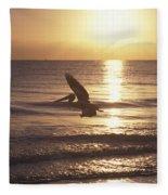 Australian Pelican Glides At Sunrise Fleece Blanket