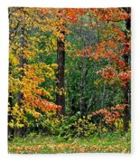 Autumn Landscape Fleece Blanket