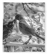 Baby Robin - Yummy Fleece Blanket