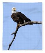 Bald Eagle 7 Fleece Blanket