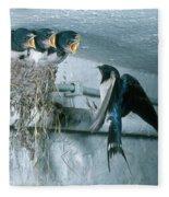 Barn Swallows Fleece Blanket
