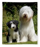 Bearded Collie And Puppy Fleece Blanket